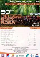 Affiche cross bian rosa 1-1
